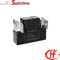 HFE17 Series - 2 Pole Normally Open/Normally Closed Relay 12.0W, 24.0W 200 Amp