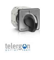 Telergon Dahlander Cam Switches